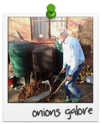 HOTBIN Compost Helps to Grow Great Onions
