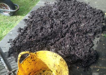 HOTBIN compost – drying out