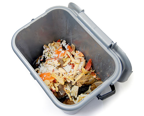 Compostable Food Waste