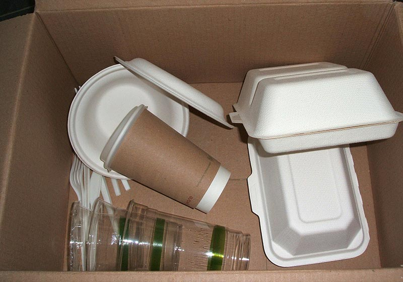 Biodegradable Vegware Food Packaging
